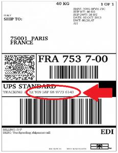 Ldv-UPS-anonima-1-231x300 traccia il mio pacco