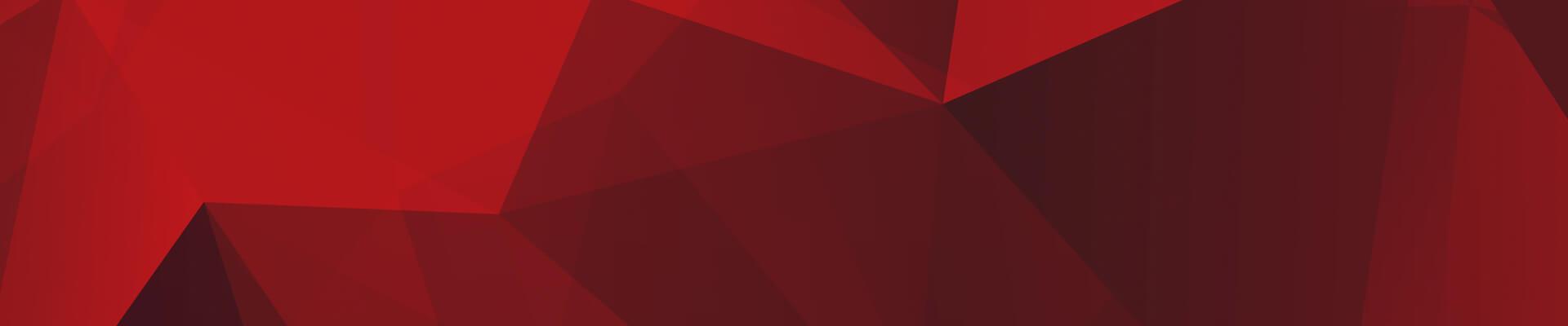 red-background Chi siamo?
