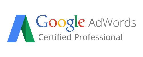 google-ads-certified Servizi e spedizioni per ecommerce